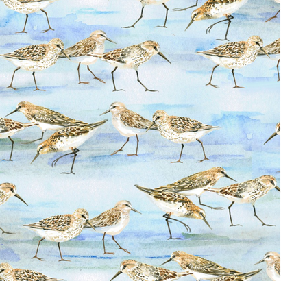 Strandstof met vogels -Henry Glass
