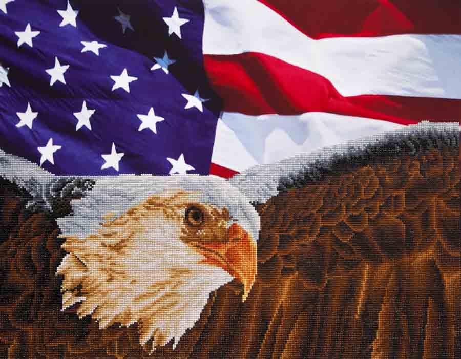 Diamond Dotz Bald Eagle & Flag Design Size 71,12 x 55,9cm