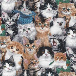 Katten Quiltstof-Elisabeth Studio