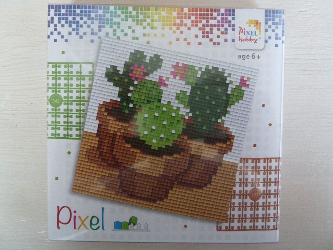 Pixel setje Cactus