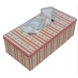 Kartonnage pakket Tissue Box