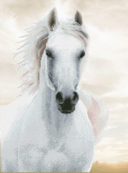 Diamond Dotz Imperial Stallion design size 48 x 65 cm