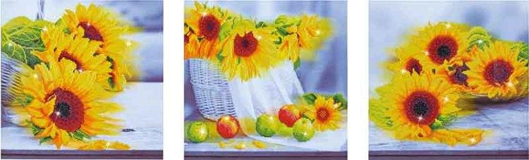 Diamond Dotz Sunflower Days Design Size 142 x 42cm