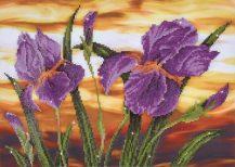 Diamond Dotz Iris Sunset Design Size 52 x 37cm