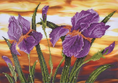 Diamond Dotz Iris Sunset Design Size 52 x 37cm